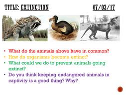 MN---Extinction.pptx