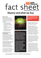 slavery_and_what_we_buy.pdf