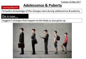 Adolescence---Puberty.pptx