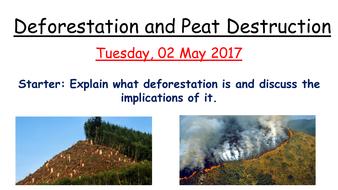 Deforestation and Peat Destruction