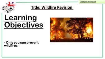 wildfires-revision1.pptx