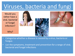 Viruses, bacteria and fungi NEW AQA APPROPRIATE