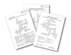 Flat-Stanley-crosswords-preview-photo.jpg