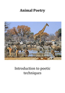 Introduction to poetry for Level 1/2
