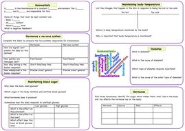 Homeostasis revision worksheet