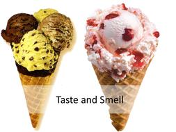 Taste-and-Smell.pptx