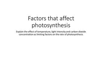 how does light affect photosynthesis