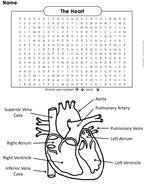 The-Heart---Circulatory-System-Word-Search.pdf