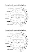 diff-circulation-model.docx