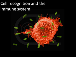 1.-Cell-recognition-and-the-immune-system.pptx