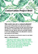 Conservationist Brief, Resources and Learning Objectives.docx