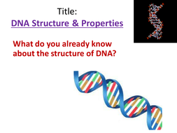 (2)-DNA-Structure---Properties.pptx