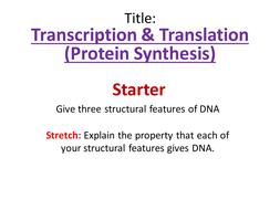 Dna translation.