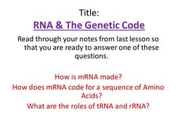 (4)-RNA---The-Genetic-Code.pptx