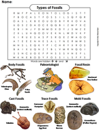 Types of Fossils Word Search
