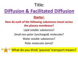 (3)-Diffusion---Facilitated-Diffusion.pptx