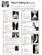 Diagnostic-Radiology-Lab-answer-key.pdf