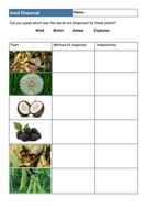 ks3 plants lesson 5 seed dispersal by makingsolutions teaching resources tes. Black Bedroom Furniture Sets. Home Design Ideas