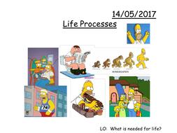 Life-Processes.pptx