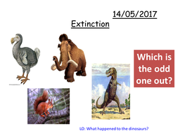 Extinction-PPT.pptx