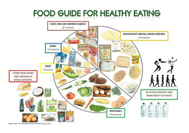 healthy-eating-plate.docx