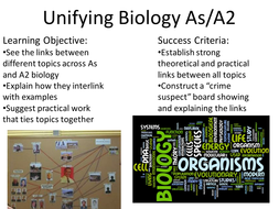 "Unifying Biology AQA A-level ""Crime Board"" Revision Task"