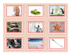 Phonics-Consonant-Blends-sm-sn-sw-sl-pr-st-Photo-Card-Game.pdf