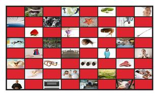 Phonics-Consonant-Blends-sm-sn-sw-sl-pr-st-Photo-Checkerboard-Game.pdf