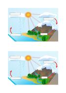 Water-cycle-simple-GCSE-Bio.docx