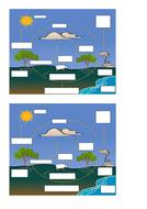 Carbon-Cycle-label-GCSE-Bio.docx