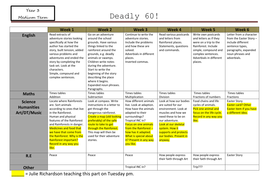 Medium-planning.docx
