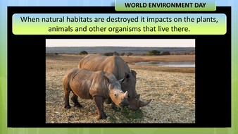 preview-images-world-environment-day-2020-14.pdf