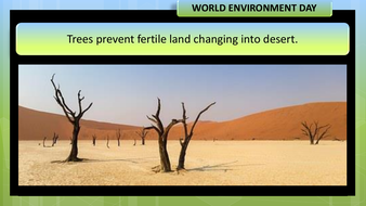 preview-images-world-environment-day-2020-24.pdf