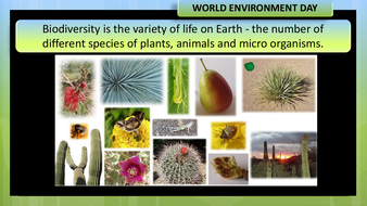preview-images-world-environment-day-2020-4.pdf