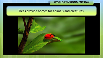preview-images-world-environment-day-2020-22.pdf