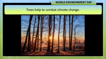 preview-images-world-environment-day-2020-19.pdf