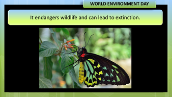 preview-images-world-environment-day-2020-15.pdf