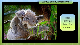 preview-images-world-environment-day-2020-23.pdf