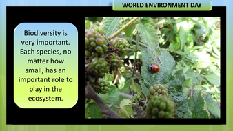 preview-images-world-environment-day-2020-5.pdf