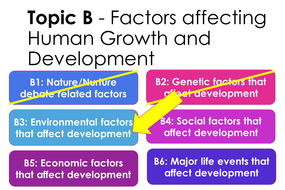 9.-B3---Environmental-Factors.pptx