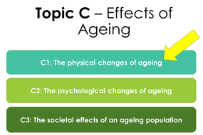 13.-C1---Physical-effects-of-ageing.pptx