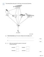 Exam-Q---MS.pdf
