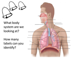 Ocr gcse pe respiratory system unit of work by davelawal teaching ocr gcse pe respiratory system unit of work ccuart Choice Image