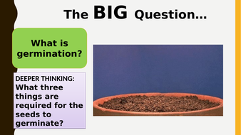 AQA new specification-REQUIRED PRACTICAL 8-Germination-B11.9