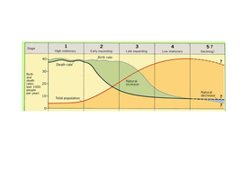 demographic transition model by misterhutson teaching resources tes