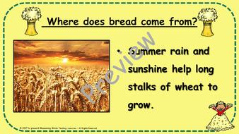 Harvest-Art-Lesson-Plan---Preview-Page-6.pdf