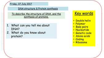 Dna structure protein synthesis new aqa gcse by killelay dna structure protein synthesis new aqa gcse ccuart Images