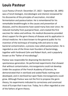 Louis Pasteur Handout by sfy773 - Teaching Resources - Tes