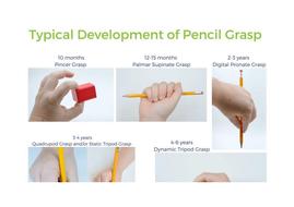 Pincer-grip-dexterity.docx