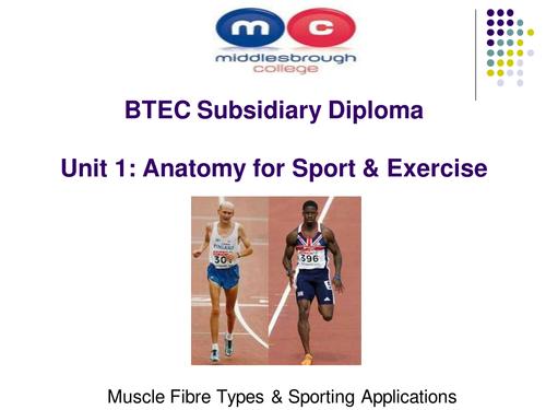 BTEC Level 3 Unit -1 Anatomy & Physiology Muscle Fibres (Premium ...